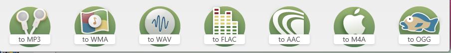 Freemake Formats