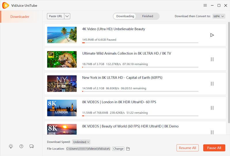 vidjuice video downloader 2